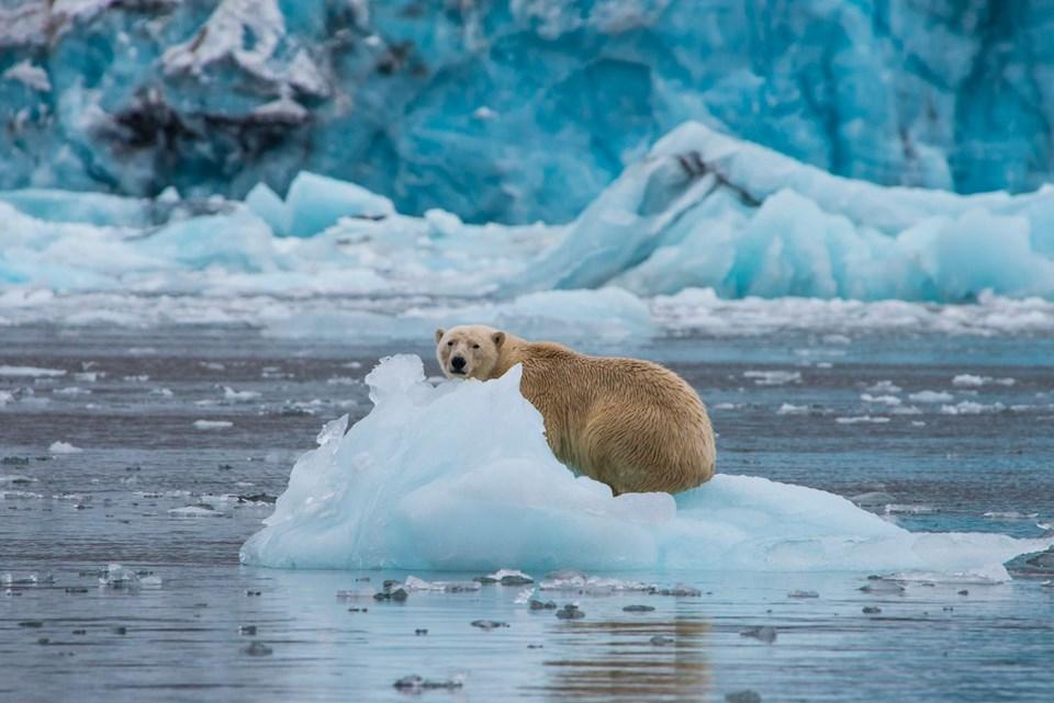 Bilim İnsanları Uyardı: Küresel Deniz Seviyesindeki Artış Hızlanıyor