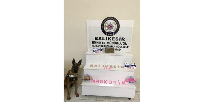 Polis köpeği 'Galia' bingo yaptı