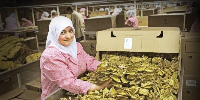 Ege ihracat artışında Türkiye birincisi oldu
