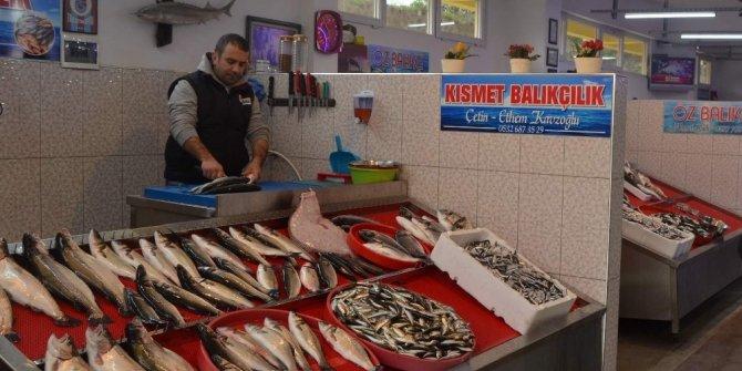 Karadeniz'de balık kalmayınca Trabzon'a balıklar Ege'den geldi