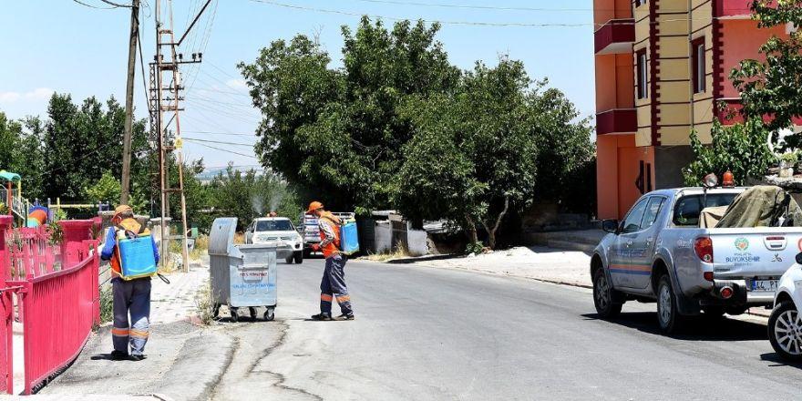 Büyükşehir'den haşereyle etkin mücadele