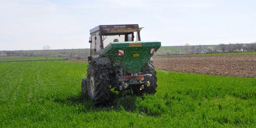 Trakya'da çiftçiler buğday gübreleme mesaisine başladı