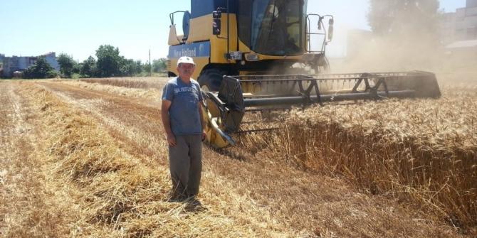 Biçerdöverle hasatta 'dane kaybı' uyarısı