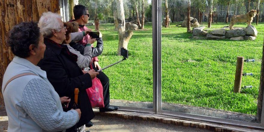 Büyükşehir'in ücretsiz kent turları yeniden başlıyor