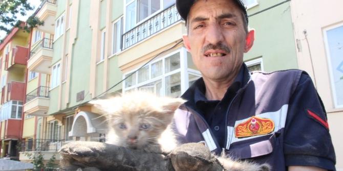Gece kurtarılan yavru kedi tekrar aynı araçta mahsur kaldı