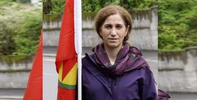 Norveç PKK'lı teröristi iade etti HDP destek çağrısı yaptı