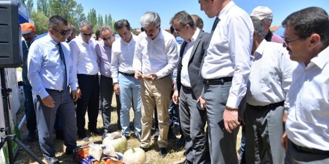 Pınarbaşı'daki tarla gününe büyük ilgi