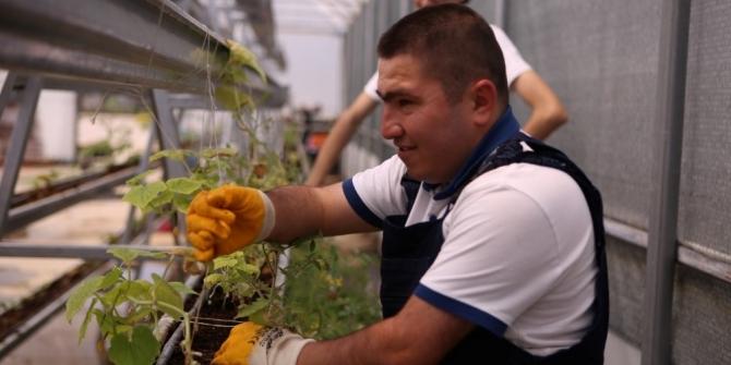 Özel öğrenciler, meyve ve sebze yetiştiriyor