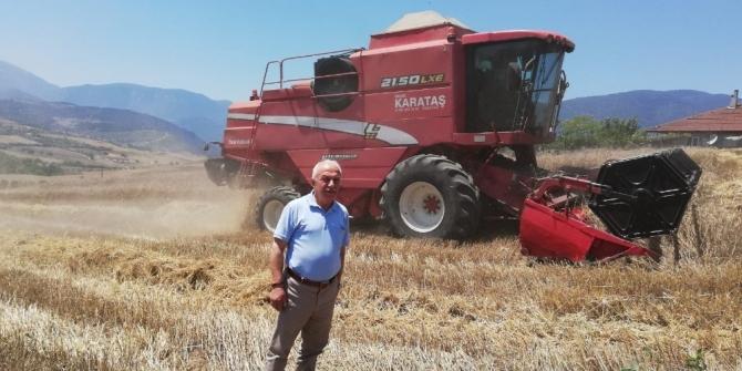 Karabük'te buğday hasadı başladı