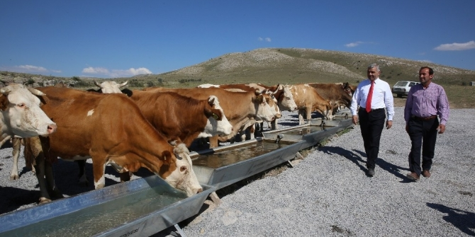 Büyükşehir'in 2018 kırsal yatırımı 110 milyon TL