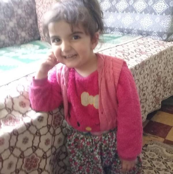 Tokat'ta kaybolan 3.5 yaşındaki Evrim'i arama çalışmaları sürüyor