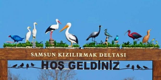 Kuş Cenneti, araç trafiğine kapatıldı