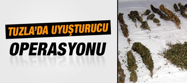 Tuzla'da Uyuşturucu Baskını