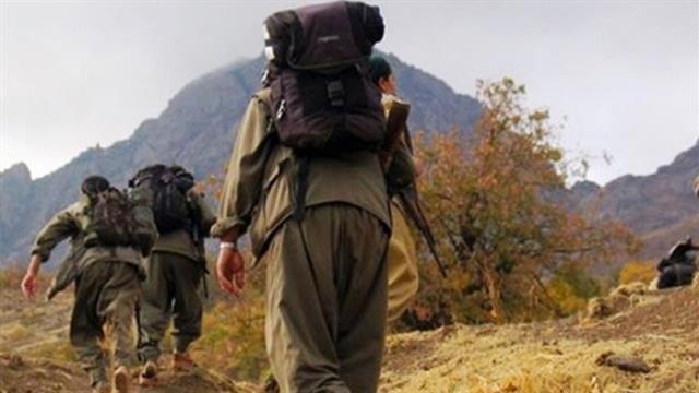 Kırmızı bültenle aranan PKK'lı Hüseyin Düz yakalandı