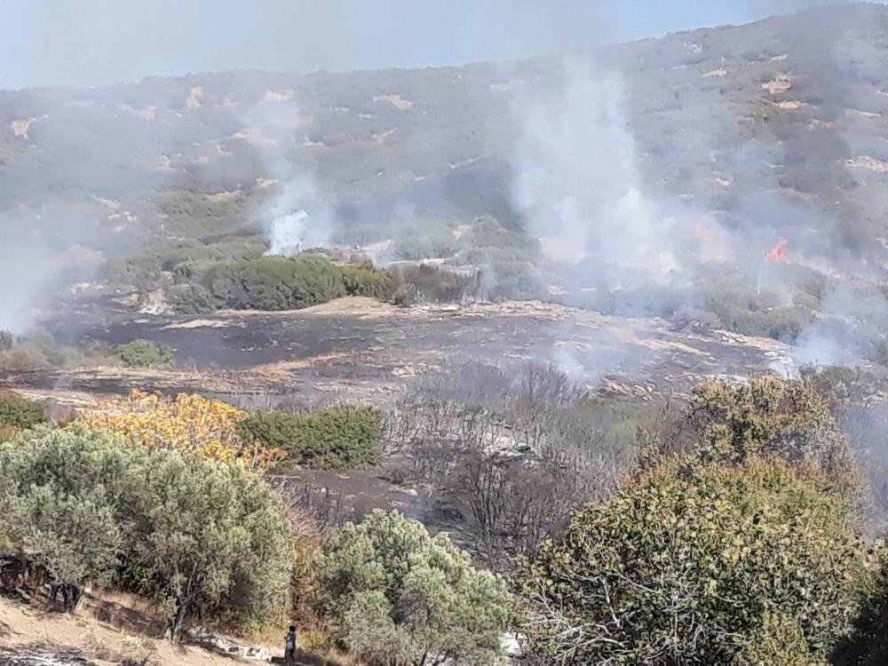 Manisa'da orman yangını, 3 hektar bozuk orman alanı zarar gördü.