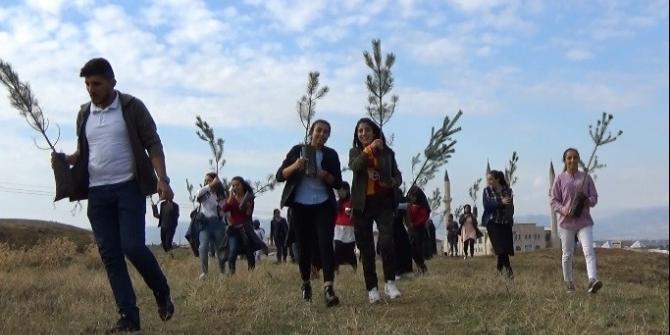 Üniversite öğrencileri şehitler adına fidan dikti