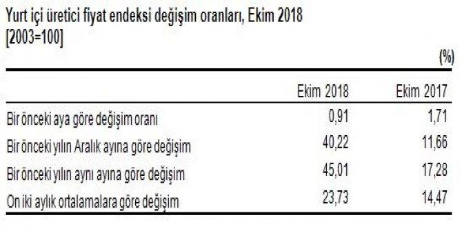 Yurtiçi ÜFE Ekim'de yüzde 0.91 arttı, yıllık üretici enflasyonu yüzde 45.01 (2)