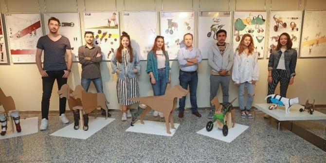 Engelli hayvanlar için protez tasarladılar