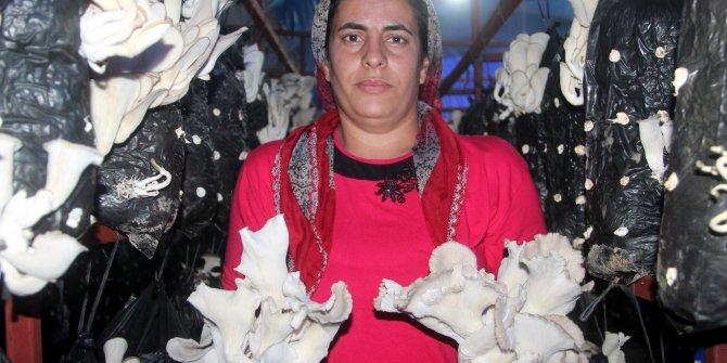 4 çocuk annesi, sera projesiyle örnek oldu