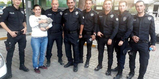 66 gün sonra kayıp kedisi Melek'e kavuştu