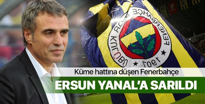 Ersun Yanal, Fenerbahçe ile 1.5 yıllığına anlaştı!