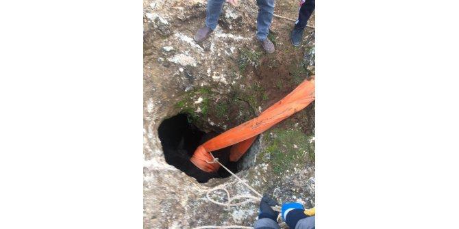 Gercüş Haberleri: 5 metrelik su kuyusuna düşen eşek 4 saatte kurtarıldı 68