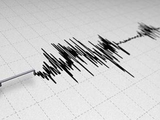 Van'da Gece 4,1'lik Depremle Uyandı