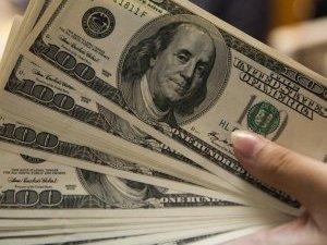 Dolar Durmuyor 2,46 Gördü! Dolarda Son durum