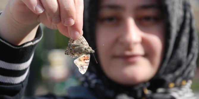 Tokat'ta kelebeklerin göçü