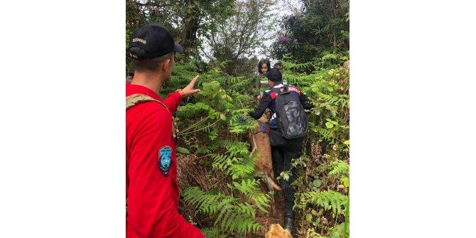 Rize'de kaybolan 2 çocuk, 17 saat sonra ormanda sağ bulundu (9)