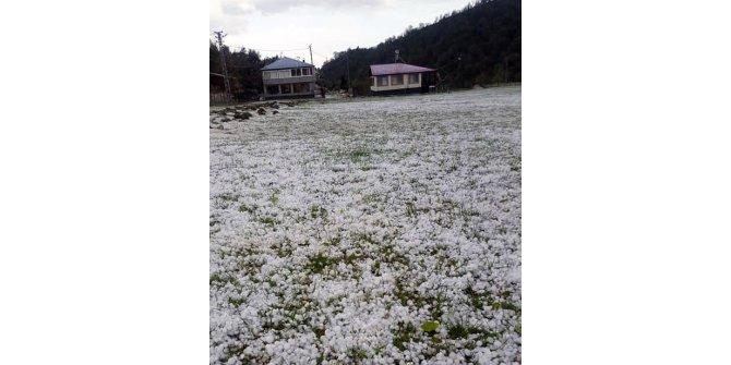 Osmaniye'deki 2 köyde dolu yağışı etkili oldu