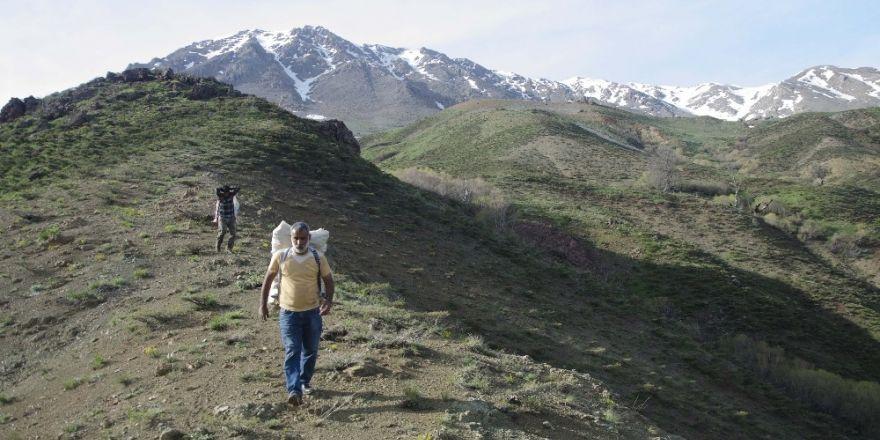 """""""Işgın""""ın dağlardan tezgaha zorlu yolculuğu"""