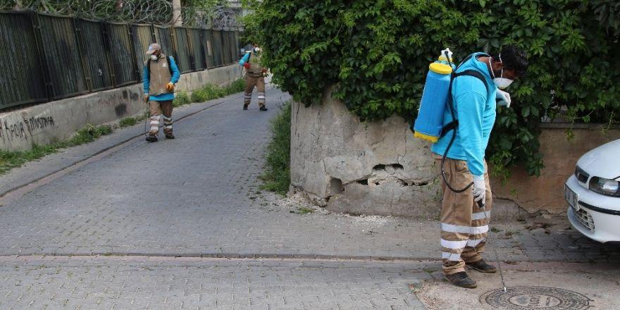 Haliliye'de haşere ve sinekle mücadele hız kesmiyor