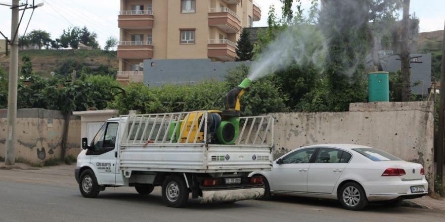 Cizre Belediyesi ilaçlama çalışmalarını sürdürüyor