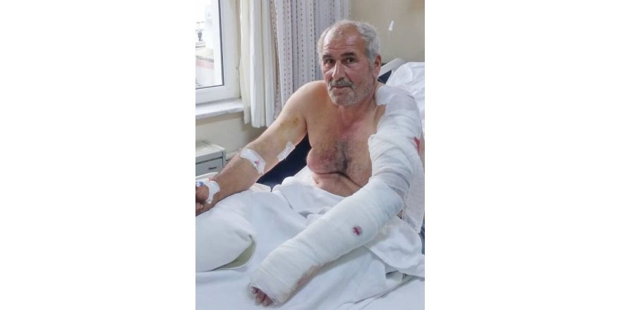 Ayı saldırısına uğrayan vatandaş yaralı kurtuldu
