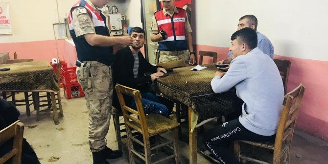 Kahramanmaraş'ta huzur uygulamasında, 1 kişi kaçak kesilen ağaçla yakalandı