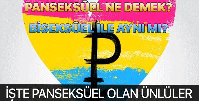 Panseksüel ne demek? Panseksüel biseksüel aynı mı?