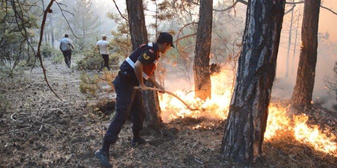 Eskişehir'de orman yangını (2)