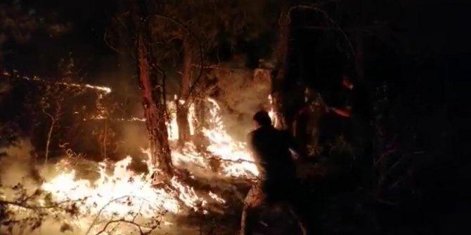 Eskişehir'de orman yangını (3)