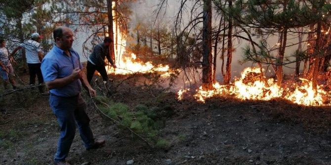 Eskişehir'deki orman yangını 15 saatte kontrol altına alındı (2)