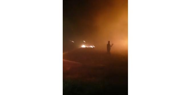 Kuşadası Yaylaköy'de yangın