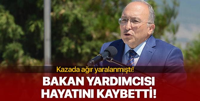 Kültür Bakan Yardımcısı Haluk Dursun kaza yaptı!