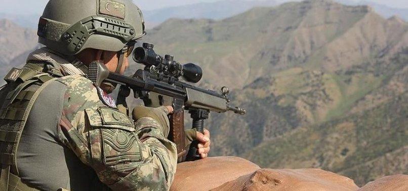 Teröristlere bir çizik daha atıldı! PKK'nın gri listedeki ismi öldürüldü...