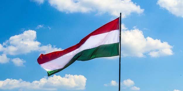 Avrupa ülkesinden Barış Pınarı Harekatı'na destek!