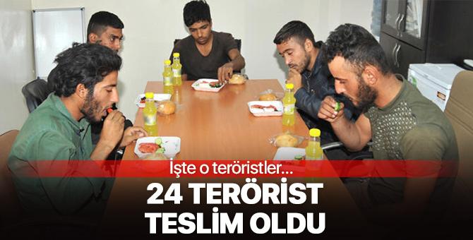 MSB'den açıklama: 24 terörist teslim oldu