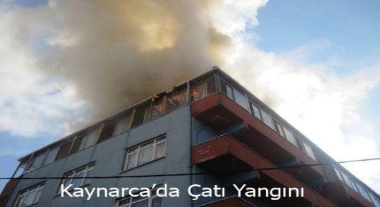 Kaynarca Mahallesinde Yangın