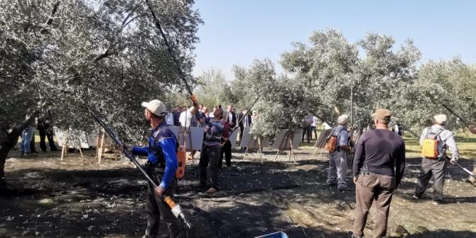 Gübretaş, zeytinde 4 kat verim artışı sağlamasının coşkusunu üreticiyle paylaştı
