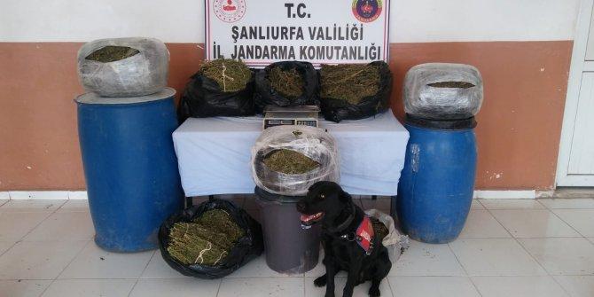 Şanlıurfa'da uyuşturucu ve kaçak cep telefonuna 4 tutuklama