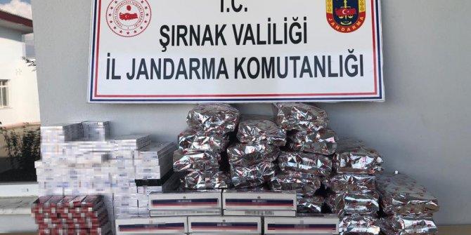 Şırnak'ta kaçakçıklık operasyonu