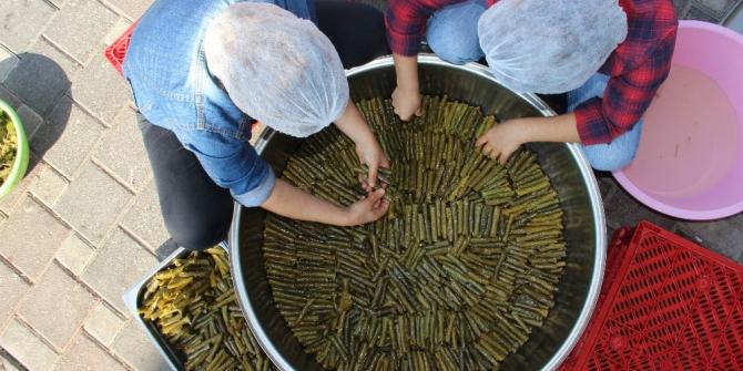 Manisalı kadınlardan Mehmetçiğe anne sarması